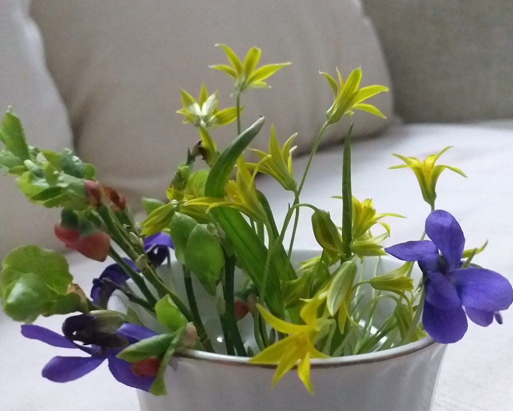 Wildflowers in a coffee cup.
